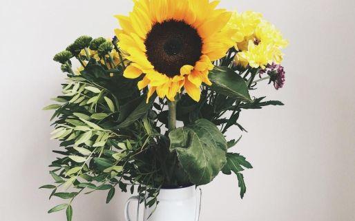 sunflowers-vscocam-sunflower-yayweekend-flowers-vsco-random
